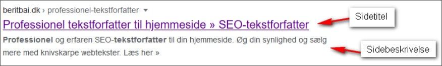 Eks. title og meta description i Google SERP. beritbai.dk
