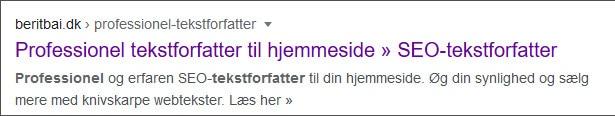 Title og metabeskrivelse i Google - beritbai.dk