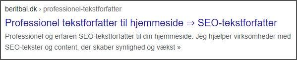 Eks. på title og metabeskrivelse til en webtekst. beritbai.dk